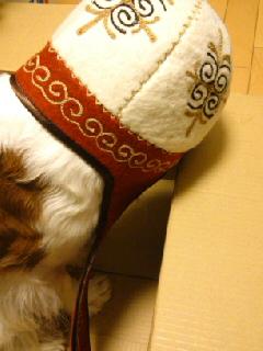 キルギスのお祭りの帽子2.jpg