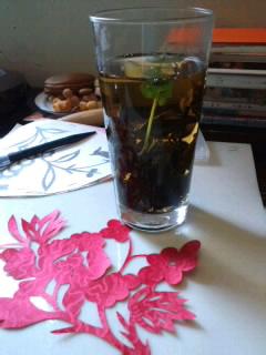 水中花みたいなお茶に♪.jpg